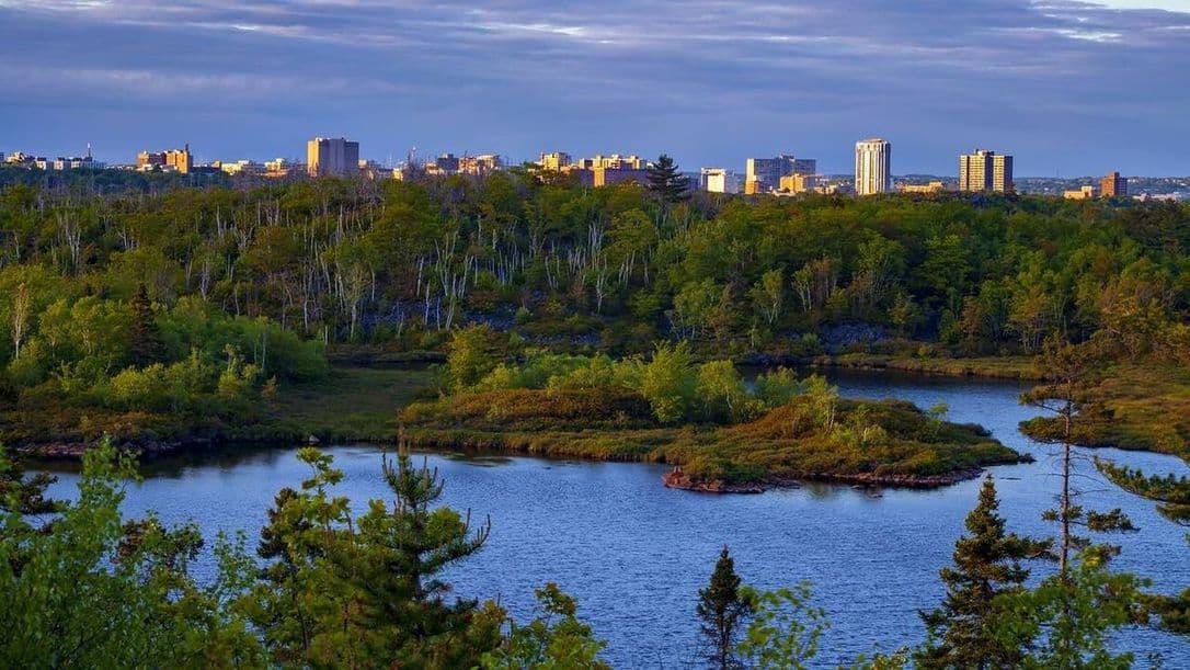 """صورة حديقة برية جديدة بالقرب من وسط هاليفيكس كجزء من حملة """"Keep Halifax Wild"""""""