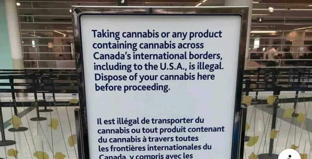 صورة #تورونتو ـ التخلص من #المخدرات قبل مغادرة المطار