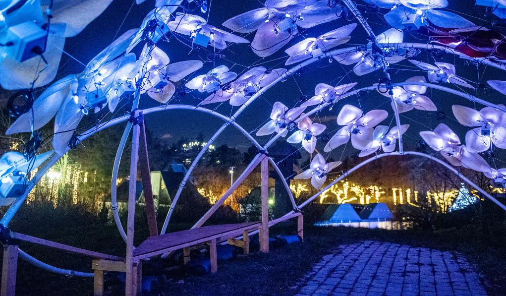 Photo of 5 أنفاق مضاءة في #تورونتو يمكنك زيارتها في #عطلة هذا الموسم
