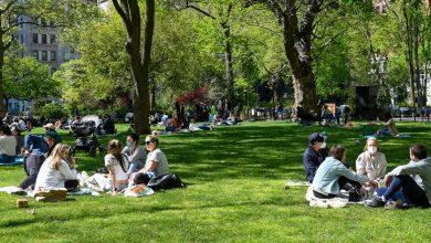 صورة ستتمكن مدارس تورنتو من استخدام حدائق المدينة كمكان لإقامة الدروس الخارجية.