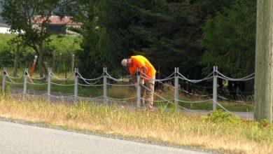 صورة مسؤولو الحدود الأمريكية يركبون حاجز كابلات على طول الحدود الكندية الأمريكية
