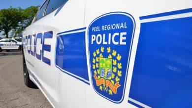 Photo of البحث عن المشتبه بهم بسرقة سيارة أم وطفلتها البالغ من العمر ثلاث سنوات في مسيساجا