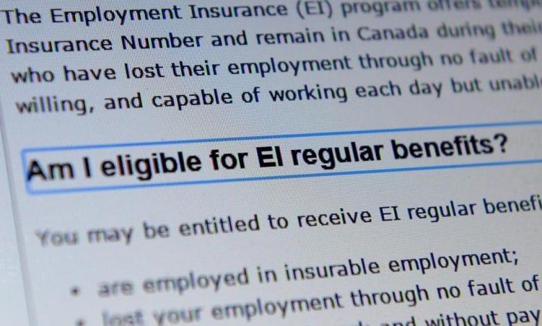 مفوضو نظام التأمين في العمل