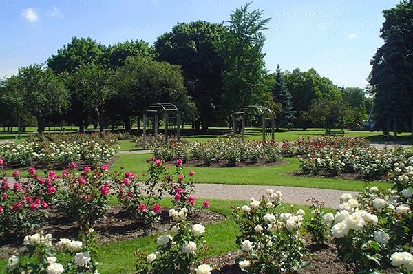 حديقة غيج